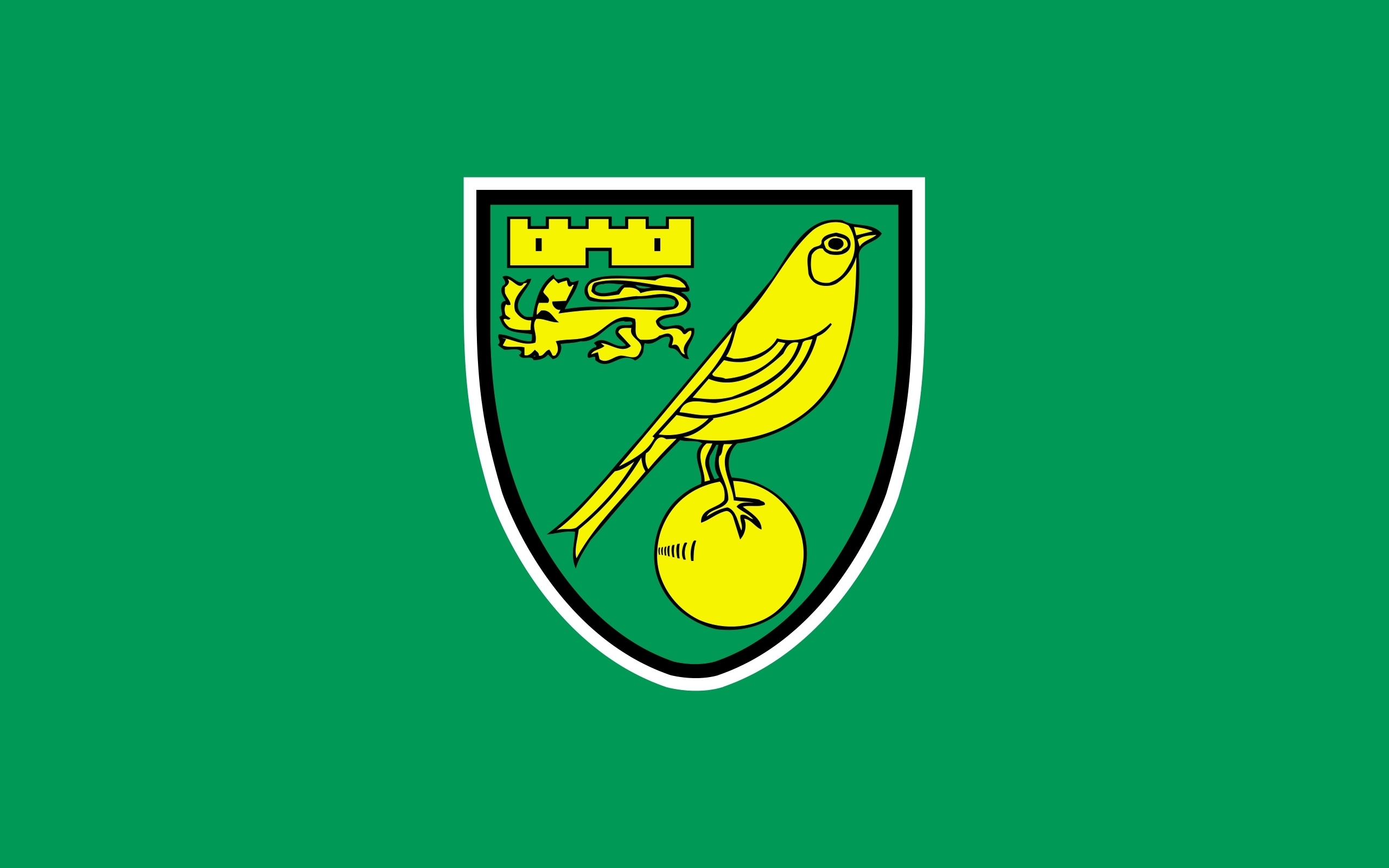"Will Norwich secure promotion back to the top flight"" Predictions for the Canaries run in"